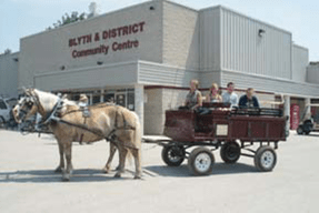 Horses and carriage took campers to Blyth Buskerfest